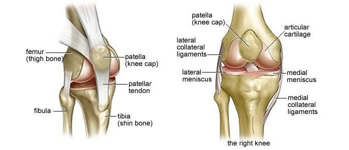 knee replacement pegasus pain